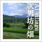 AI village ~次男坊の畑~