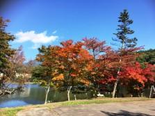 28-10-21tateshinako